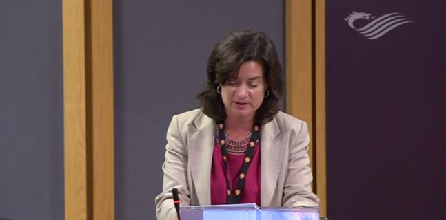 Eluned calls for National Care Service for Wales